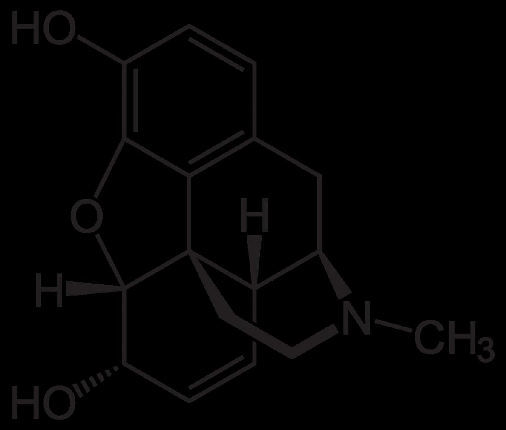1804- Morphine developed